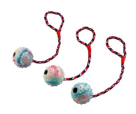 Hundespielzeug: 3 x Ball am Seil Ø 6cm #83496