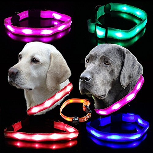 UC Express® Hunde Leuchthalsband Universell LED Hundehalsband Leuchtband Leuchtschlauch Blinkhalsband Blinki Farbwunsch, Farben:Blau
