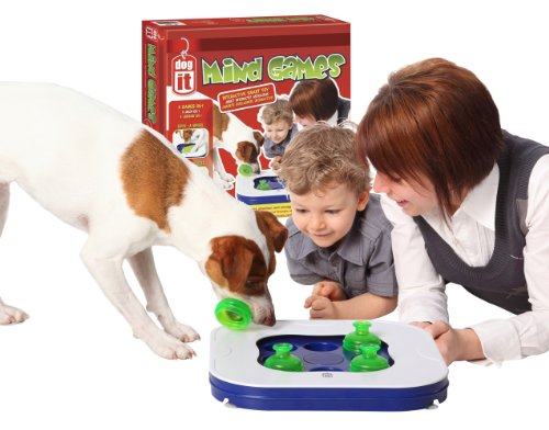 Dogit 90500 Mind Games, 3 In 1 interactives Spielzeug