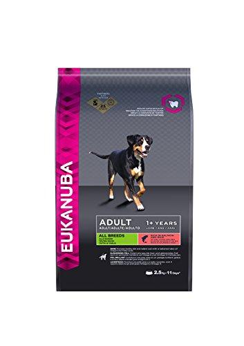 Eukanuba Premium Hundefutter mit Lachs & Reis, Trockenfutter für sensible Hunde aller Rassen (1 x 2,5 kg)