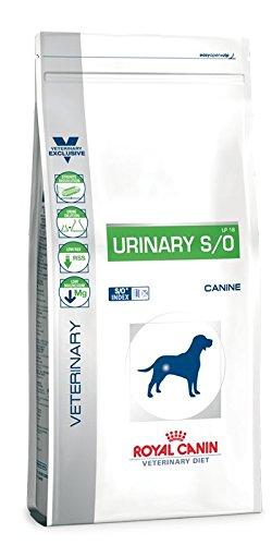 Royal Canin Urinary S/O Hund Trockenfutter