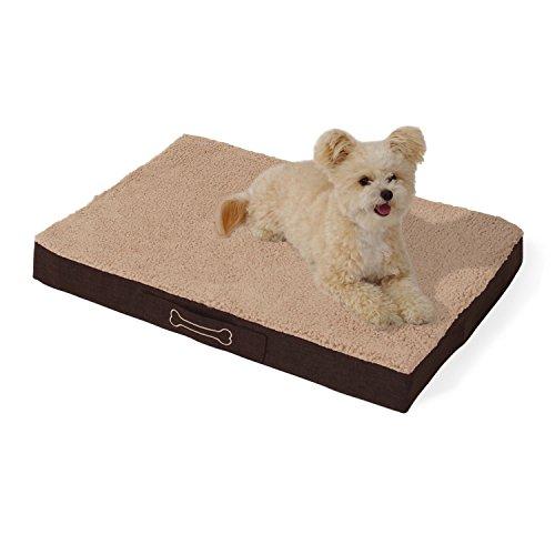 brunolie Buddy Hundebett waschbar, orthopädisch und rutschfest, Hundekissen mit kuscheligem Plüsch