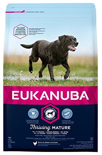 Eukanuba Mature Trockenfutter für Große Rassen – Hundefutter mit Neuer und verbesserter Rezeptur für reife Hunde von 6-9 Jahren in der Geschmacksrichtung Huhn