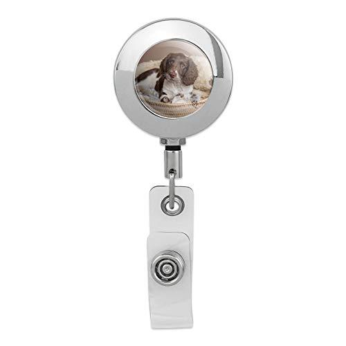 Springer Spaniel Hundekorb, einziehbare Spule aus Metall, verchromt